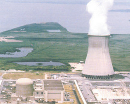 PSEG Nuclar is seeking permission from the federal Nuclear Regulatory Commission to begin a pilot program to produce Cobalt-60 at its Hope Creek nuclear reactor at the Artificial Island generating complex in Lower Alloways Creek, seen above.