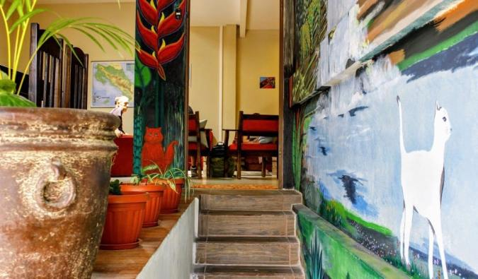 The colorful interior of the Stray Cat hostel in San José, Costa Rica