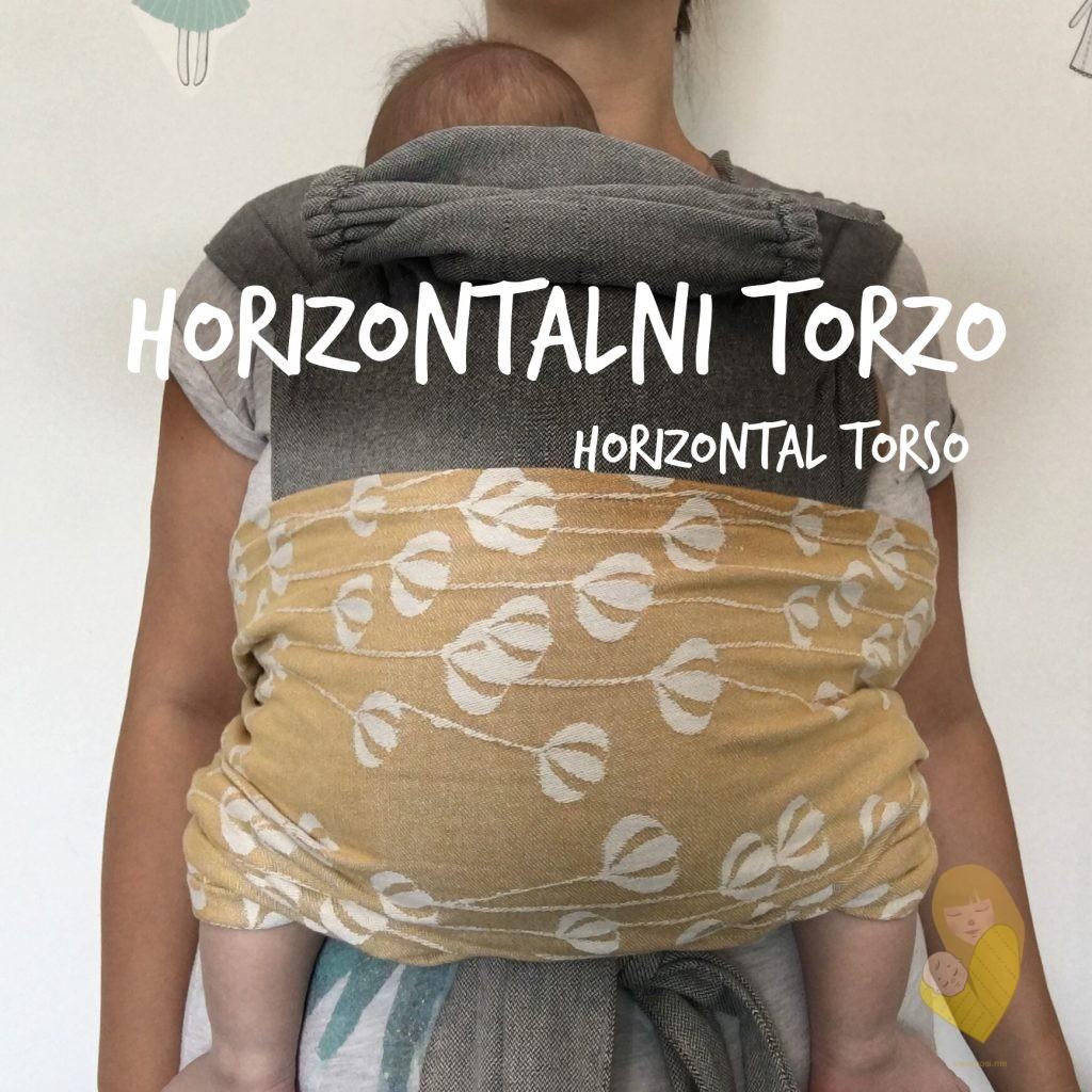 horizontal torso