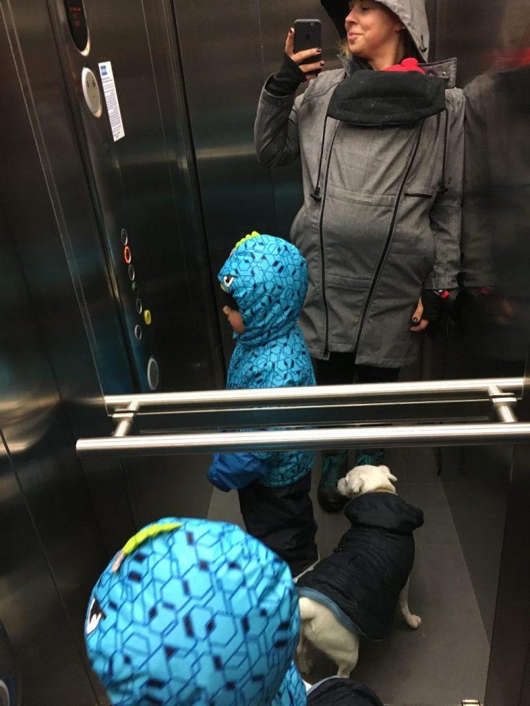 hoppediz babywearing jacket 4in1