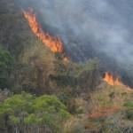 U Boru na gradskoj deponiji treći dan tinja vatra
