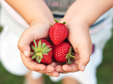 According to Dr. Lidy Pelsser's study, 64 percent of children diagnosed with ADHD are actually experiencing a hypersensitivity to food.