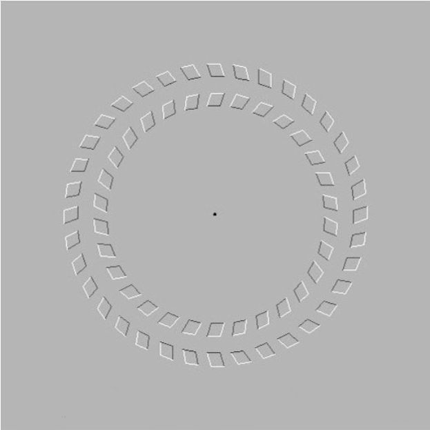 Here is Pinna-Brelstaff Illusion. If you focus on the dot and move your head in, then move it out the circles spin.