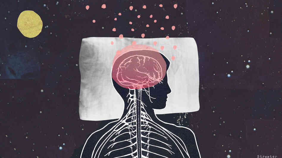What do our brains do while we sleep? Image courtesy of Katherine Streeter for NPR
