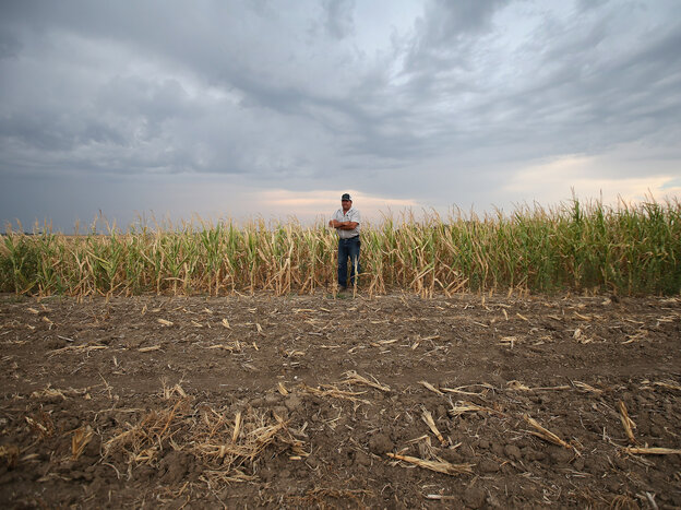 Solitude and self-reliance: Farming corn and wheat historically has required less labor and dependency on others in a community.