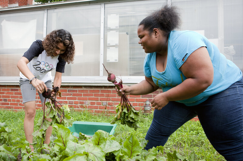 Yanci Flores (left) and Roshawn Little harvest beets from the garden at Eastern Senior High School on July 17.
