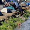 Homeless people and their tents line a canal in Honolulu in June 2015. Hours after a city crew cleared the banks of the canal, the homeless people that had been living there moved right back to the riverside.
