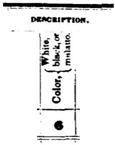 The race question on the U.S. Census Bureau survey in 1850.