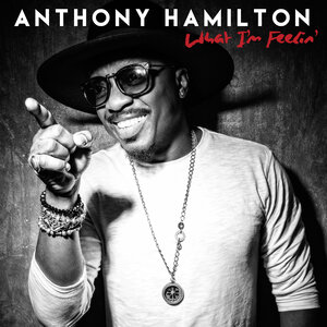 Image result for What I'm Feelin' - Anthony Hamilton 300 x300