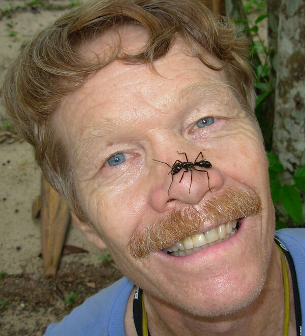 """""""King of Sting"""" Justin O. Schmidt is a biologist at the Southwestern Biological Institute. A """"connoisseur of pain,"""" he has ranked 83 different insect stings on a pain index based on his own experience."""