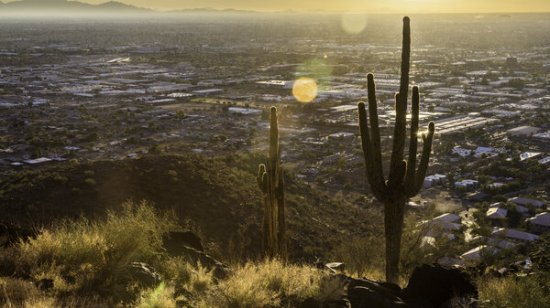 Phoenix Tries To Reverse Its 'Silent Storm' Of Heat Deaths
