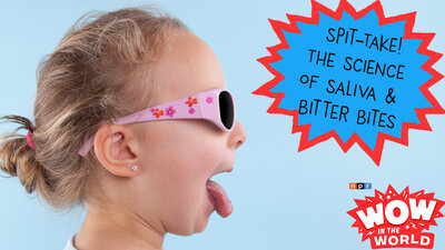 Wow in the World   NPR The Science Of Saliva And Those Bitter Bites