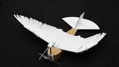 'PigeonBot' Brings Robots Closer To Birdlike Flight