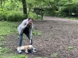 Amy Cooper, White Woman Who Called Police on Black Bird-Watcher in Central Park, to be Charged for Falsely Reporting Incident