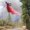 The Bootleg Fire, The Nation's Biggest, Gives Scientists An Unexpected Experiment