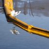The California oil pipeline spill could endanger sea life for years, experts say