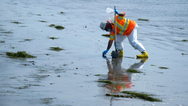 A worker cleans oil-contaminated sand in Newport Beach, Calif., this week.