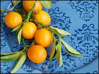 Kumquats  Discovering the Sweetness of Sour   NPR Kumquats