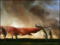 Yoav Lemmer, AFP/Getty Images
