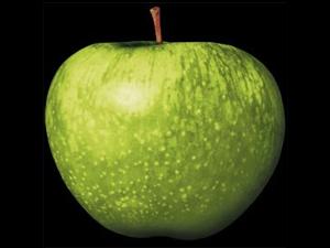 Apple Records logo (300)