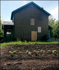 Detroit Farming