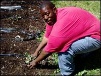 Farming in Detroit