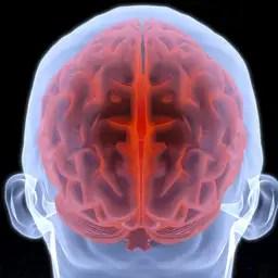Ontsteking in brein wellicht oorzaak chronische vermoeidheid
