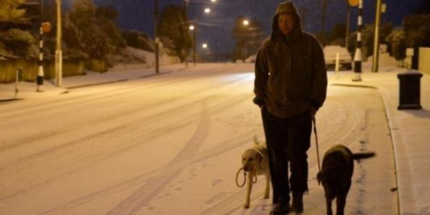 Calvin Beel walks his dogs on Taieri Rd in Dunedin this morning. Photo / Stephen Jaquiery