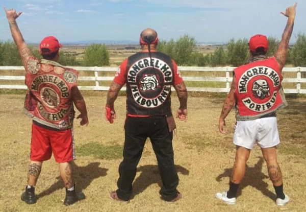 Social media posts show the gang have spread its tentacles into Melbourne, Sydney and the Gold Coast. Photo / Mongrel Mob Australia Facebook