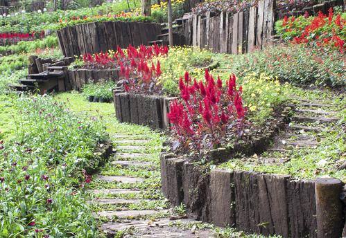 bordure de jardin en bois utilite
