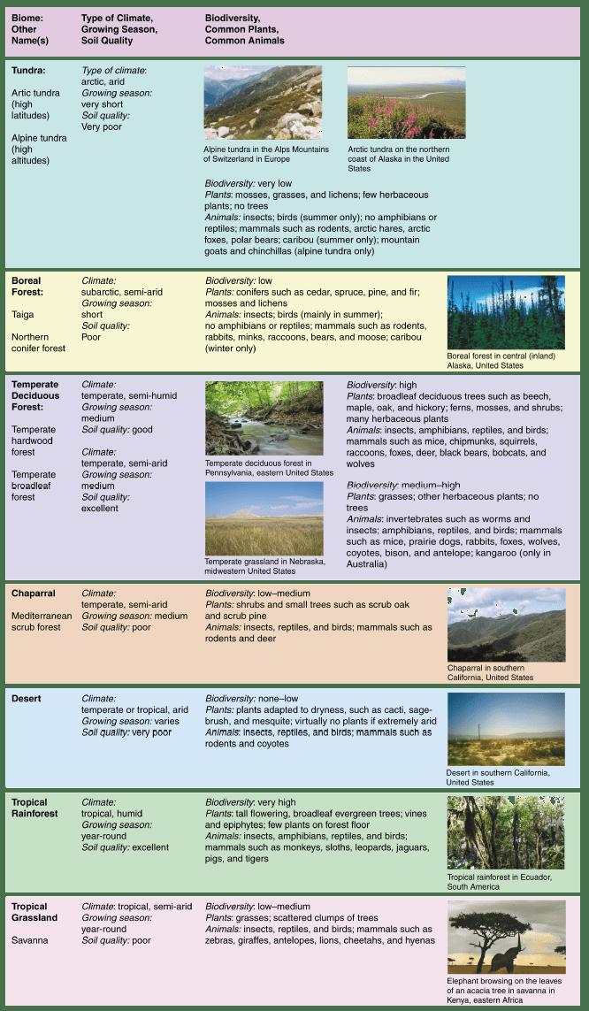 Terrestrial Biomes Opencurriculum