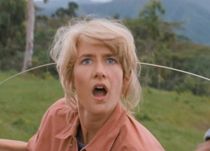 Image result for LAURA DERN