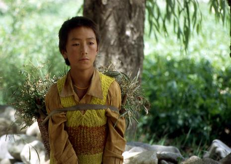 tibet-adolescent-impassible.1206693228.jpg