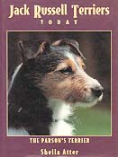 Jack Russell Terriers Today. The Parson's Terrier
