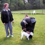 2010-05-30 Hällefors BKKänd mentalstatusHökmossens Freja