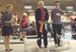 Sollentuna 2011-03-19BIR Danscan's FrederikBIM Honeyfarms Kiowa (SE UCH)