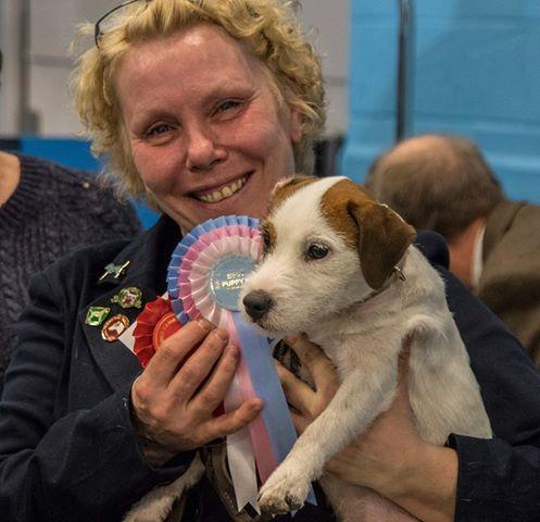 150301 BIG3 puppy Oxford Canine