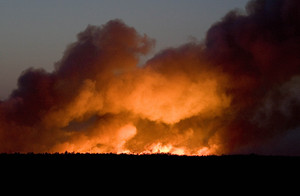 The fire, which engulfed thousands of acres, may have been caused by a flare during a military training mission at the Warren Grove Gunnery Range, New Jersey National Guard officials said.
