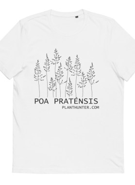 Blue grass - Poa pratensis 100% Organic Cotton T-Shirt White
