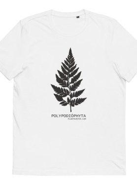 Fern - Polypodiophyta 100% Organic Cotton T-Shirt White