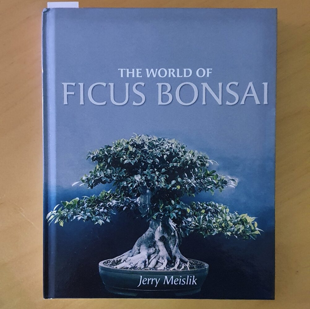 The World of Ficus Bonsai