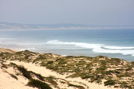 The Comporta Coast