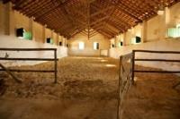 Herdade da Comporta Horse Stables Portugal