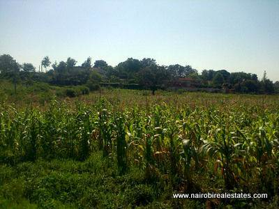 Price dropped for Land for sale in Runda Nairobi