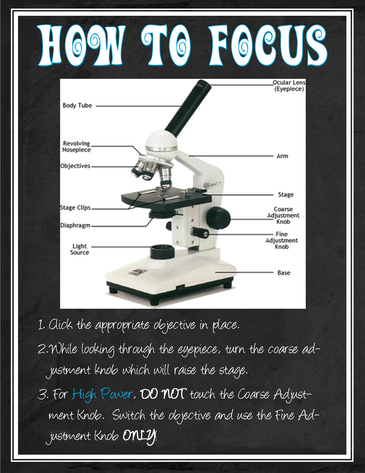 Microscope Instructions For Classroom