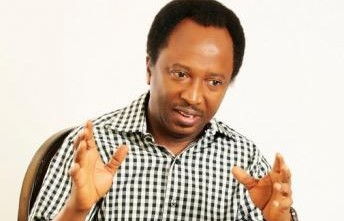 Image result for shehu sani