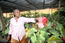 Mrs. Muhammed in her Plant Nursery