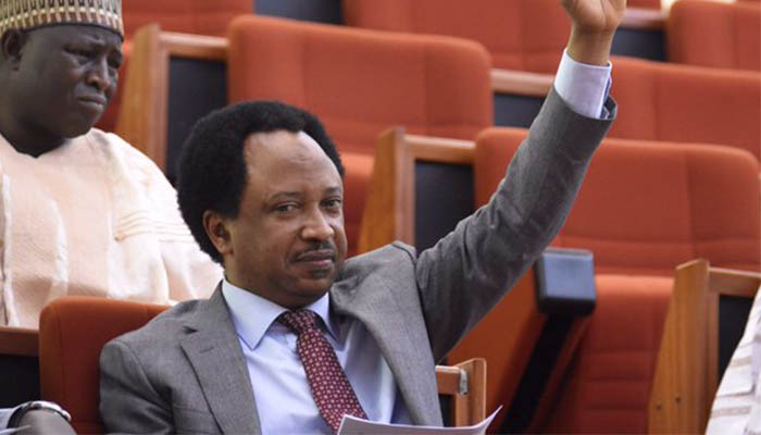 N13.5M Monthly Illegal Allowance: Lawmakers angry, plot against Whistle-blower Shehu Sani