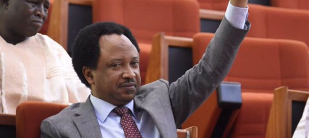 Shehu Sani [Source: Deltabreed]