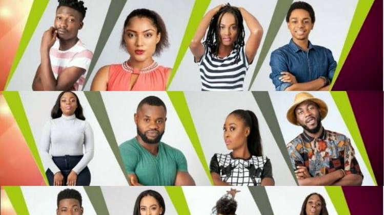 Big Brother Naija Housemates [Photo credit: Concise News]